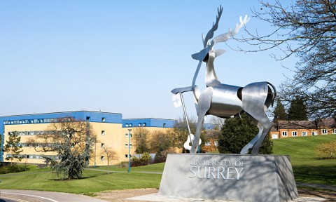 University of Surrey 5 image